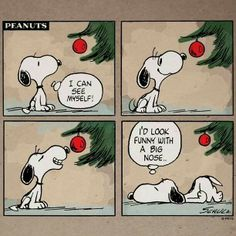 Snoopy with a big nose Snoopy Cartoon, Snoopy Comics, Peanuts Cartoon, Peanuts Snoopy, Peanuts Comics, Peanuts Christmas, Charlie Brown Christmas, Charlie Brown And Snoopy, Merry Christmas