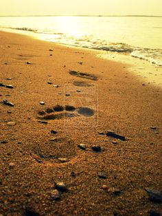 Google Image Result for http://fc00.deviantart.net/fs70/i/2010/244/6/d/footprints_in_the_sand_by_ashley711-d2xsye0.jpg