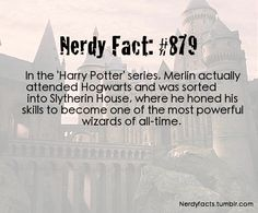 I knew he went to Hogwarts but not which house he was in!