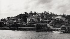 Hamilton Heights from the Brisbane River, November 1950