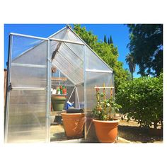 """52 Likes, 5 Comments - Shopping, Saving & Sequins (@shopsavesequin) on Instagram: """"couldn't ask for a more beautiful sunday to be put-putting around in my #greenhouse ☀️🌱🌷🐿 #palram…"""""""