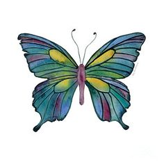 Painting - 71 Cathedral Butterfly by Amy Kirkpatrick