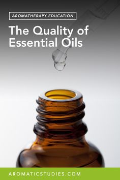 By Jade Shutes, BA, Dipl. AT., Cert. Herbalist The quality and authenticity of the essential oils we utilize are the very heart and foundation of aromatherapy. The quality of essential oils is often a contentious subject bringing up feelings of protectiveness and challenging beliefs. I have written this article, not so much as a definitiveREAD MORE