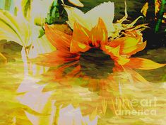 """"""" Painted Lady """" Sunflower, By: Beverly Guilliams"""