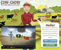 Fun game for kids to learn about agriculture and cattle.