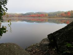 Reflections of the Fall foliage colors can be seen on the calm water surface, at the setbacks of the Connecticut River, in Hinsdale, New Hampshire. Image captured in mid October on a misty morning in New England.