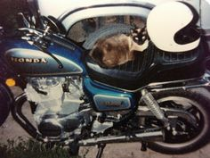 Honda CM 400 A motorcycle. My first bike in 81. Cat's too I guess, lol!