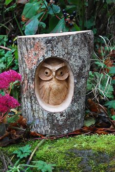Wooden Owl in Tree Trunk