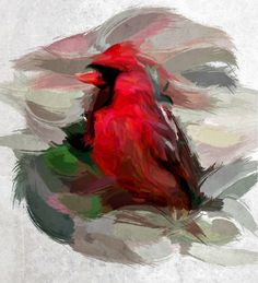 Red Cardinal. Artwork, Red, Painting, Animals, Work Of Art, Animales, Auguste Rodin Artwork, Animaux, Painting Art