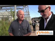 Plantas que curan: Josep Pamiés y Txumari Alfaro, Parte1 - YouTube  Lista de reproducción de 7 vídeos