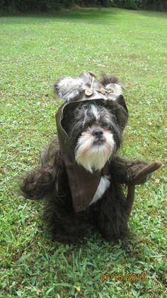 Ewok Star Wars Dog Halloween Costume