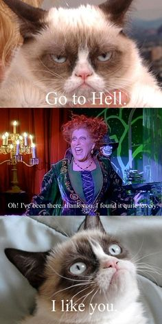 Grumpy cat & Winifred Sanderson! @jlbrandt82 @CrystalMHiggins #GrumpyCat