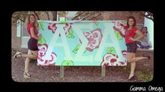 alpha sigma alpha Banner outside our house