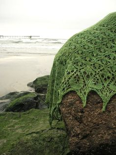 lacy knitted moss