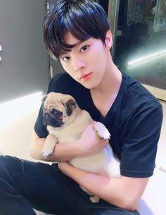 170109 UP10TION Xiao Fancafe Update - Healing Time @ Pet Café #업텐션 #Wooshin #우신