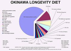 zone diet research paper