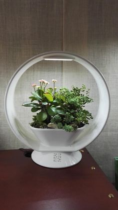 Voici comment allier la décoration d'intérieur avec l'esprit du jardin ! Nous vous présentons cette très jolie lampe à led ludique avec sa jardinière intégrée et son enceinte bluetooth.