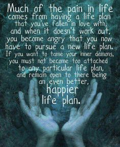 Much of the pain in life comes from having a life plan that you've fallen in love with, and when it doesn't work out, you become angry that you now have to pursue a new life plan.