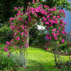 Garden Ideas & Projects - The Home Depot