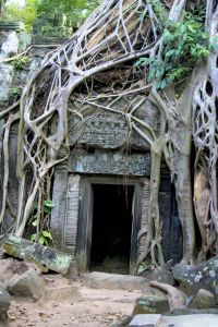 Ruins (Ankor Thom, Cambodia)