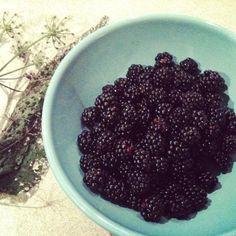 Blackberry picking treasures, louisenormanstudio