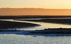 Google+ California, River, Beach, Google, Outdoor, Outdoors, The Beach, Beaches, Outdoor Games