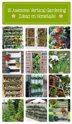 15 awesome vertical garden ideas on Hometalk! great ideas for my patio wall! http://www.hometalk.com/b/625927/vertical-planter