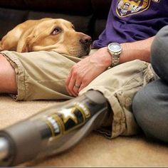 DOG BLESS USA begins today. This month let's honor the bond between soldier and dog. For every 1000 likes, we will donate a service dog to a soldier with PTSD. Dog Bless America. Love always, Lucky