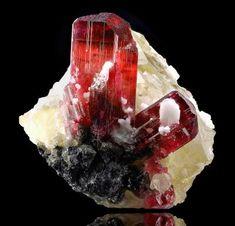 Rubelita.  Anton Watzl Minerals