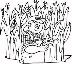 Picking Corn Coloring Page Children In A Corn Field Picking Ears