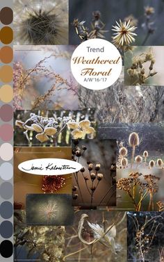 Trend: Weathered Florals Autumn/Winter 2016-17