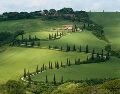 Tuscany, some day i'm going to own a vineyard here.