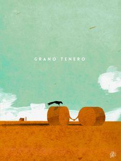 #riccardoguasco #illustri  Grano tenero (soft wheat)