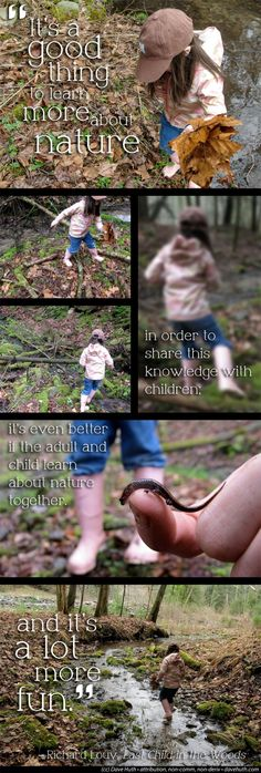 """""""It's a good thing to learn more about nature in order to share this knowledge with children; it's even better if the adult and child learn about nature together. And it's a lot more fun."""" – Richard Louv, Last Child in the Woods"""