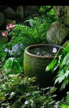 Tropical Garden Landscaping This water bowl would look so nice and cooling in my shade garden! Small Water Features, Water Features In The Garden, Cottage Garden Design, Small Garden Design, Small Gardens, Outdoor Gardens, Unique Gardens, The Secret Garden, Secret Gardens