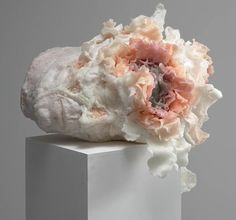 London-based artist Rebecca Stevenson sculpts wax heads bursting with floral blossoms, transforming the faces into equally beautiful and disturbing fi...