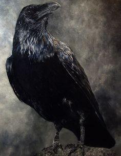 Art by Jason Black (black raven):