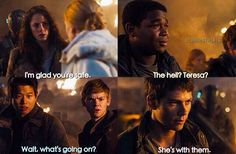 The look of hurt on their faces... | The Scorch Trials | Teresa, Newt, Minho and Thomas