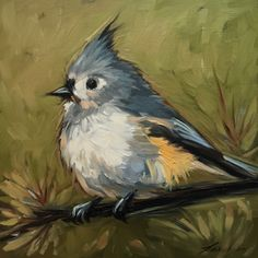 A personal favorite from my Etsy shop https://www.etsy.com/listing/224306402/tufted-titmouse-painting-6x6