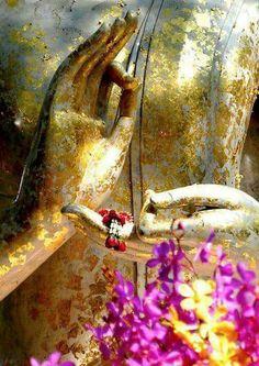Hand-Mudras by the Meditating Buddha Buddha Kunst, Buddha Art, Yoga Meditation, Roda Do Dharma, Krishna, Image Zen, Deco Zen, Buddha's Hand, Yoga Studio Design