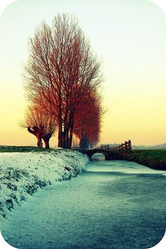 colors in winter