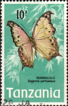 Tanzania 1973 Butterflies Fine Used SG 171 Scott 48 Other Tanzania and British Commonwealth Stamps HERE!