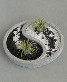 Relaxing Yin Yang inspired Zen terrarium comes with colorful pebbles and two air plants. #Jardinzen