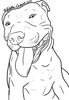 free_pit_bull_line_art_9_by_wolfie_undead-d6tvse0.png (529×770)
