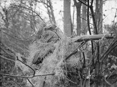 An infantryman camouflaged with steel wool.
