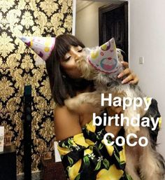 Wonders!! Toke Makinwa celebrates her dog's birthday with touching message     Media personality Toke Makinwa who recently released a book titled On Becoming Toke Makinwa is having another reason to smile but this reason would surprise many.Toke took to her social media page to share a loved up photo to celebrate her 6 months old dog Coco. In the post she said 6 months ago you came into my life all smelly off a long flight but one look at you and I knew you were trouble. Happy 6 months Coco…