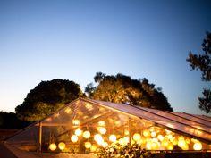 marquee Marquee Wedding Receptions, Reception Decorations, Weddings, Banquet Decorations