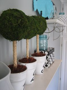 Topiary - moss and rafea Family Christmas Gifts, Christmas Holidays, Topiary Trees, Topiaries, Box Hedging, Arts And Crafts, Diy Crafts, Ball Decorations, Terracotta Pots
