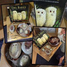 "Owl babies story stones - from Rachel ("",) Baby Learning Activities, Forest School Activities, Nursery Activities, Autumn Activities, Infant Activities, Kindergarten Activities, Book Activities, Preschool, Baby Owls"