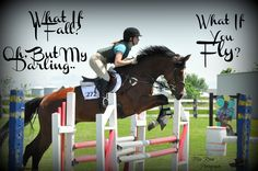 Blue Roan Photography Equine Photo Shoot Horse Quotes and Edits
